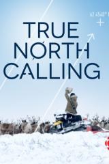 true_north_calling_2