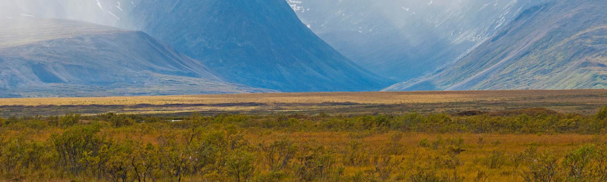 Mackenzie Mountains