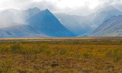 Mackenzie Mountains