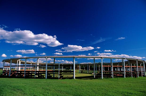 Arbour, Fort Simpson, Dehcho Region
