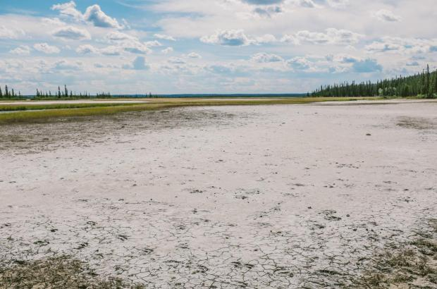 Salt Plains, Wood Buffalo National Park, South Slave Region